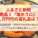ふるさと納税『塩水うに』1万円代で買える!